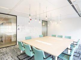 Hardmineraal Systeemplafond Plafond Hardminerale Plafondplaten Plafondplaat Intermontage